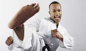 Rva Mma: 3 Months of Unlimited Kids' Martial Arts Classes at RVA MMA (47% Off)