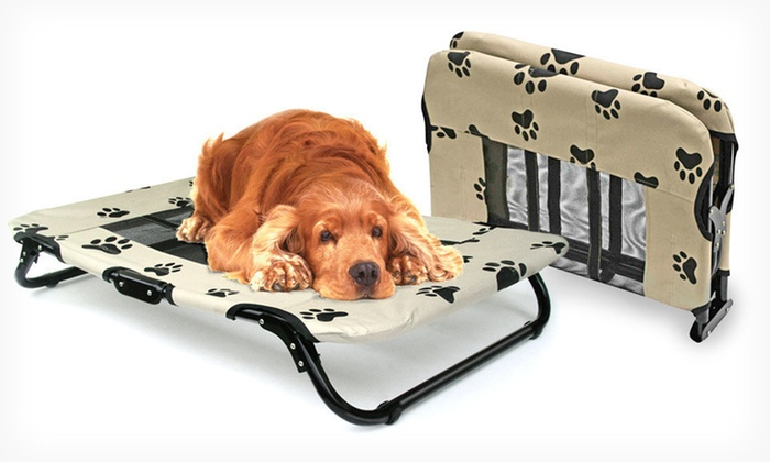 Cot Style Dog Bed
