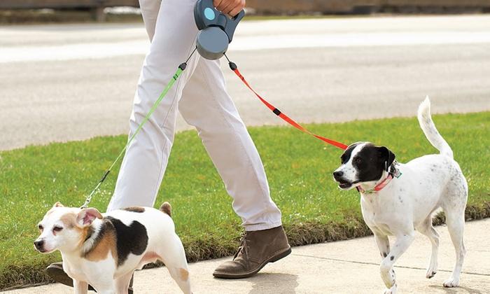 One Happy Pooch LLC - Washington DC: Five Dog Walks from One Happy Pooch (40% Off)