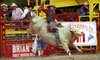 Liberty Pro Rodeo - LuLu Shriners Arena: Liberty Pro Rodeo for Two or Four at Lu Lu Shrine Rodeo Arena on September 14, 15, or 16 (Up to 52% Off)