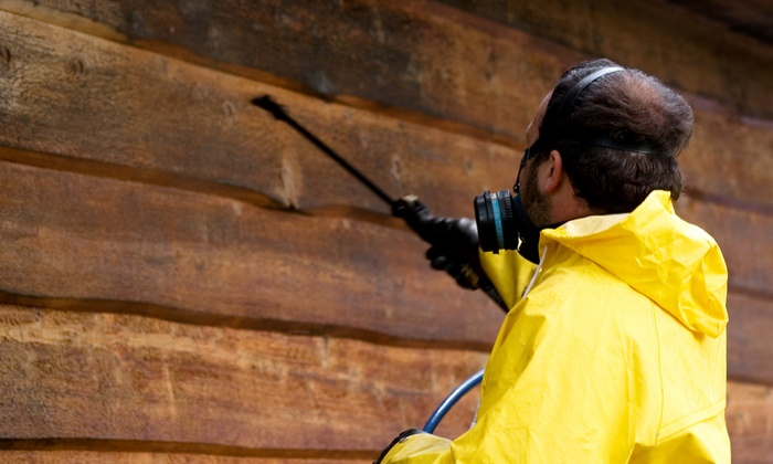Service Pro - Athens, GA: $150 for Termite Bait Station Installation with Inspection from Service Pro ($300 Value)