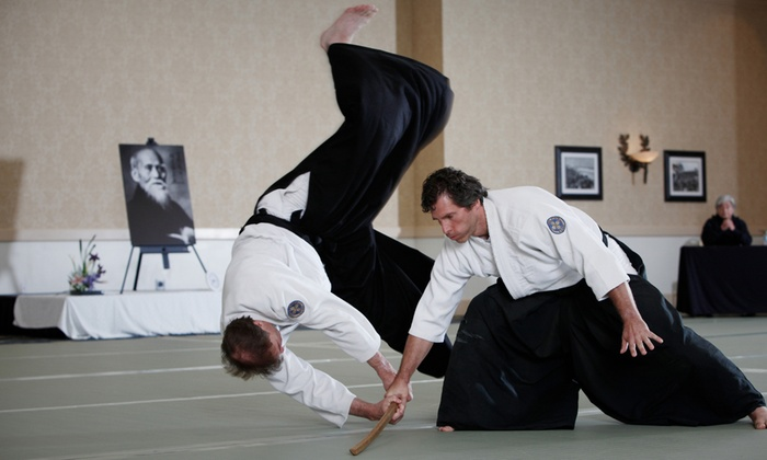Diamond State Aikido - Diamond State Aikido: One or Three Months of Unlimited Martial Arts Classes at Diamond State Aikido (Up to 54% Off)