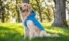 Eddie Bauer Quilted Hood Coat for Pets: Eddie Bauer Quilted Hood Coat for Pets