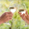 Half Off Winery Tour from NW Party Bus