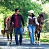 Up to 52% Off Horseback Riding