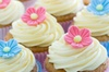 Hummingbird Bakery & Dessert Bar - Vallejo: Two Cake Pops with Purchase of A Dozen Cup Cakes at Hummingbird Bakery & Dessert Bar
