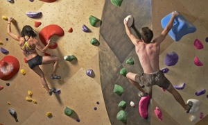 Brooklyn Boulders - Queensbridge: Rock Climbing Day Pass and Learn the Ropes Class at Brooklyn Boulders (51% Off)