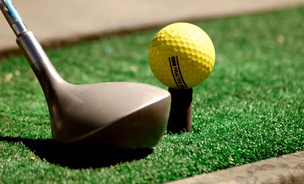 $19 for $60 Worth of Golf Lessons — RotarySwing.com