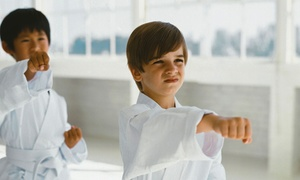 ATA Martial Arts: $22 for One Month of Beginner Martial-Arts and Fitness Classes at ATA Martial Arts ($248 Value)