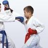 61% Off Unlimited Martial Arts Classes