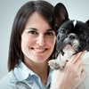 Up to 53% Off a Dog- or Cat-Vaccination Package