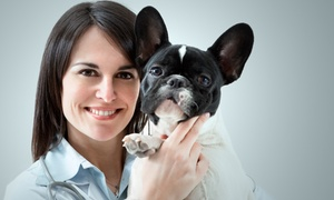 Queens Animal Health & Emergency: Pet-Vaccination Package with Optional Ear Cleaning and Nail Trim at Queens Animal Health & Emergency (Up to 53% Off)