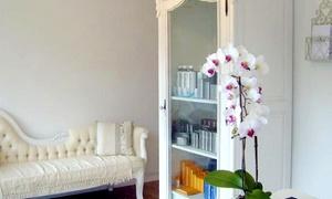 Rare Beauty Ltd: Hot Stone Massage Plus Manicure for £24 at Rare Beauty (66% Off)