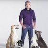 Cesar Millan Live! – Up to 51% Off Show