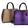 Dasein Ostrich and Croco Round Satchel