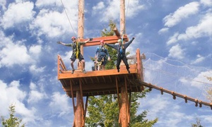 Oyama Zipline: Three-Hour All-Inclusive Ziplining Adventure for Two or Four at Oyama Zipline Forest Adventure (Up to 39% Off)