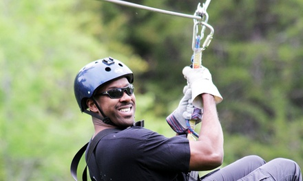 Zipline Adventure for One with Optional Souvenir T-Shirt from Wahoo Ziplines (Up to 46% Off)