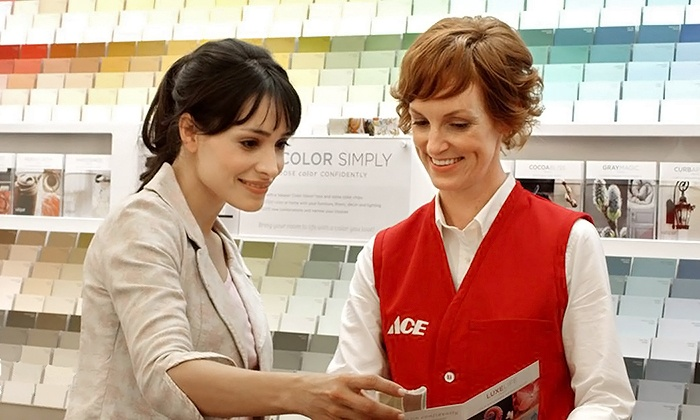 ACE Hardware - Multiple Locations: $17 for $30 Worth of Home-Improvement Supplies at ACE Hardware