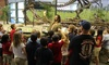 Museum of World Treasures - Old Town: Up to 51% Off Summer Camps at Museum of World Treasures