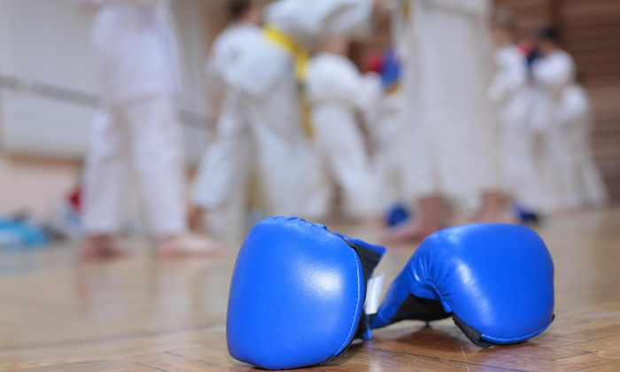 Martial Arts Of Austin - West Congress: Four Weeks of Unlimited Boxing or Kickboxing Classes at Martial Arts of Austin (60% Off)