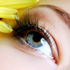 Up to 61% Off Lash Extensions at The Beauty Lounge