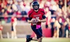 Meineke Car Care Bowl of Texas - NRG Park: Meineke Car Care Bowl of Texas Between Minnesota and Texas Tech at Reliant Stadium on December 28 (Up to 53% Off)