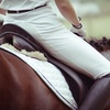 Up to 71% Off Horseback Riding at Brannon Stables