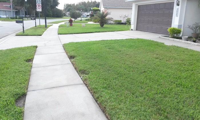 Pressure Clean Plus Roof Cleaning - Tampa Bay Area: Sidewalk or Concrete Pressure Washing from Pressure Clean Plus Roof Cleaning  (60% Off)