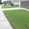 60% Off a Sidewalk or Concrete Pressure Washing