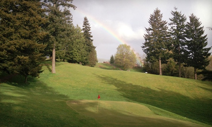 Skyline Golf Course - East Cathlamet: Nine-Hole Golf Outing for Two or Four with Lesson, Lunch, and Balls at Skyline Golf Course in Cathlamet (Up to 63% Off)