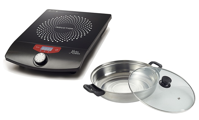 $49 for a Deluxe Induction Cooker (Don't Pay $229.99)