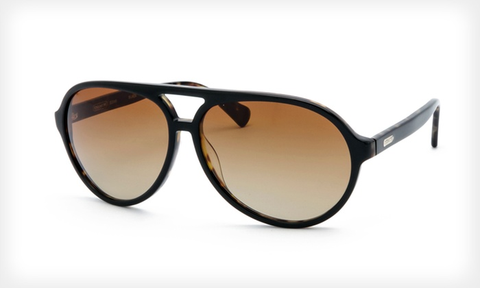 Women's Coach Sunglasses: $59.99 for Women's Coach Sunglasses ($195 List Price). Multiple Colors and Styles Available.