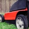Half Off Lawn-Care Services