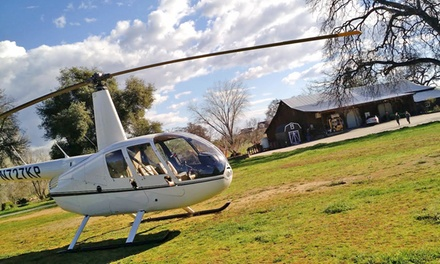 20-Minute Helicopter Tour of the Capitol for Two or Three from Capitol Helicopters (Up to 50% Off)
