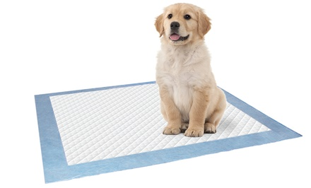 100-Pack of Pet Training Pads