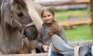 MartaFit.pl: Kolonie zimowe w siodle: 7-dniowy obóz jeździecki dla dzieci za 899 zł z firmą MartaFit.pl