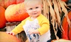 YesterLand Farm - YesterLand Farm: Fall Farm Visit for Two, Four, or Six at YesterLand Farm (Up to 57% Off)