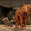 """""""War Horse"""" – Up to 50% Off Tickets"""