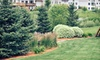 Sugar Creek Garden Center - Fort Mill: Plants and Garden Supplies at Sugar Creek Garden Center