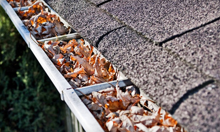 Home Pro Exterior Services - Multiple Locations: Complete Eavestrough and Downspout Cleaning from Home Pro Exterior Services (Up to 83% Off). Three Options Available.
