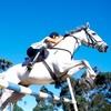 51% Off Private Horseback-Riding Lesson