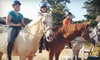 Dixieland Farm - Calahaln: One or Four One-Hour Private Horseback-Riding Lessons at Dixieland Farm (Up to 51% Off)