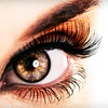 Up to 56% Off Xtreme Eyelash Extensions in Wylie