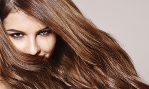 Sharon's Shear Perfection: $34 for $75 Worth of Services — Sharon's Shear Perfection