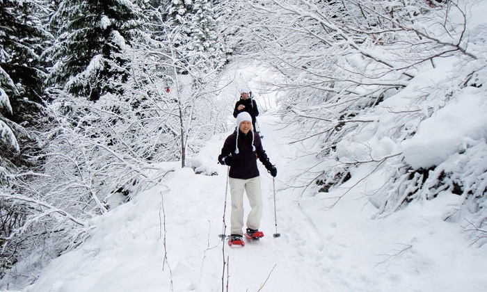 Mt. Hood Adventure - Government Camp: Moonlight or Day Guided Snowshoeing Tour for 2, 4, or 6 from Mt. Hood Adventure (Half Off)