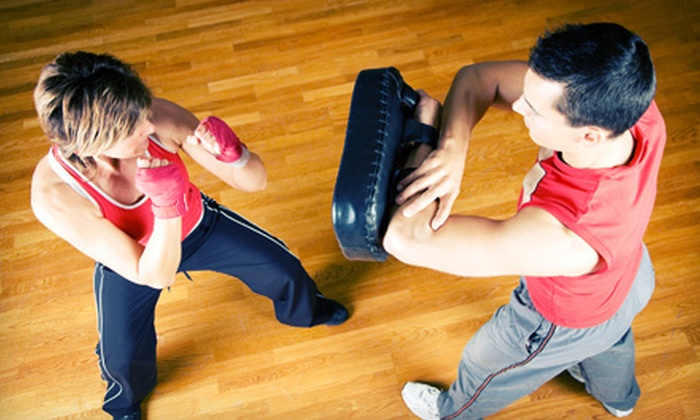 Academy of Self Defense - Santa Clara: One or Two Months of Unlimited Krav-Maga, The Pit, or CrossPit Classes at Academy of Self Defense (Up to 66% Off)