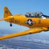 41% Off a  Stunt-Airplane or Warplane Ride