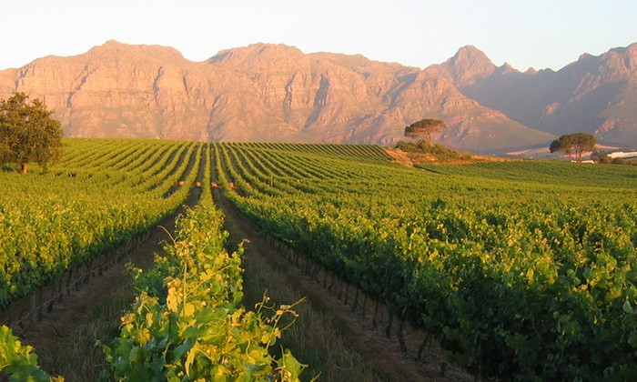Kleine Zalze - Stellenbosch: Cape Winelands: One to Two-Night Kleine Zalze Experience, Including a Round of Golf at De Zalze