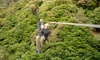 French Lick Ziplines and Wilstem Ranch - Paoli: Ziplining for Two or Four at French Lick Ziplines and Wilstem Ranch (Up to 45% Off)