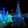 Up to 53% Off Illumination Light Show